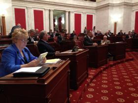 Members of the West Virginia Senate.