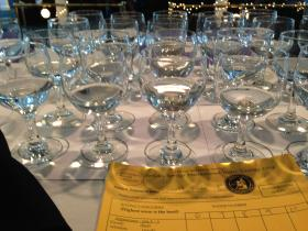 24th Berkeley Springs International Water Tasting competition, Berkeley Springs, W.Va. Feb. 22, 2014
