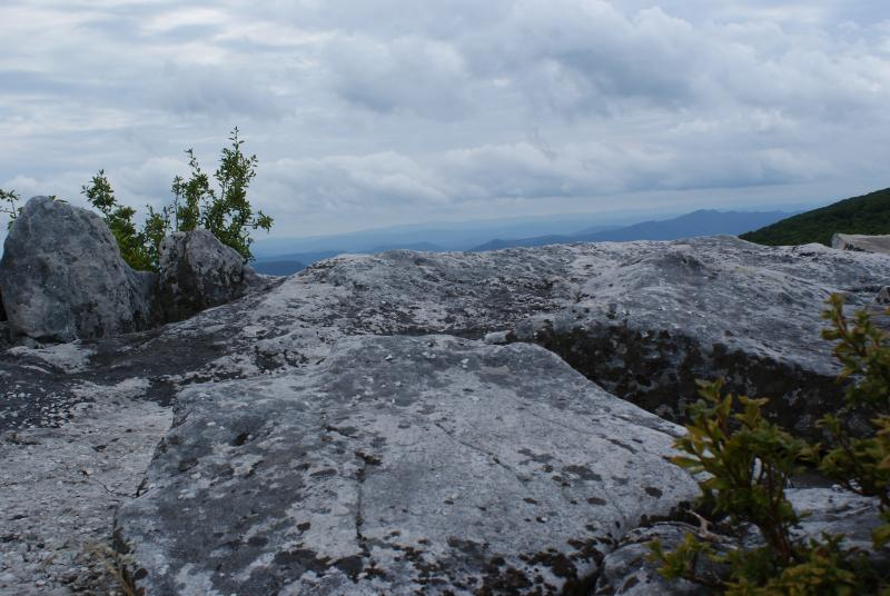 Bear Rocks, Dolly Sods, W.Va.