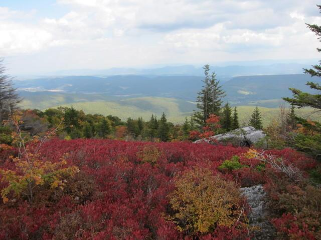 Dolly Sods, W.Va., in autumn