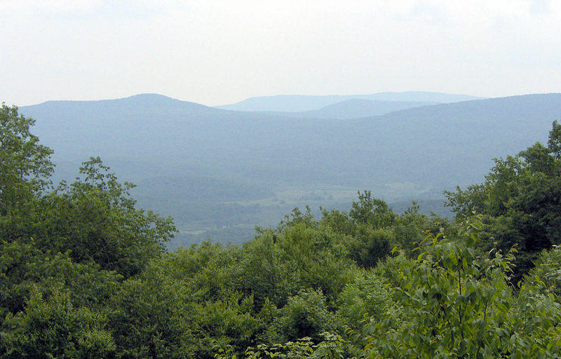 Overview of Cranberry Glades and Cranberry Wilderness, Monongahela National Forest, West Virginia