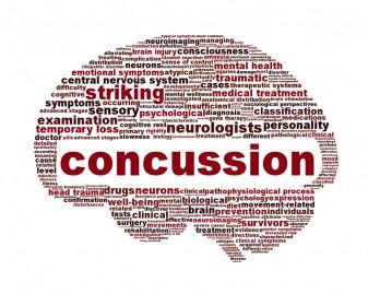 A brain about concussions from parents.com