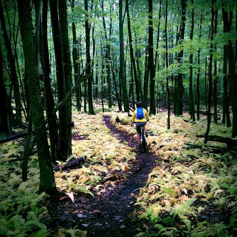 Endurance Mountain Bike Race Planned At Big Bear Lake Trail Center