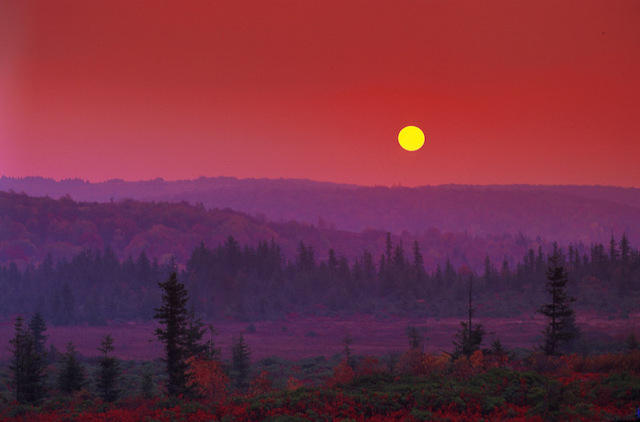 Sunset over Dolly Sods