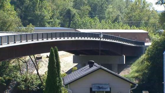 Coonskin Bridge