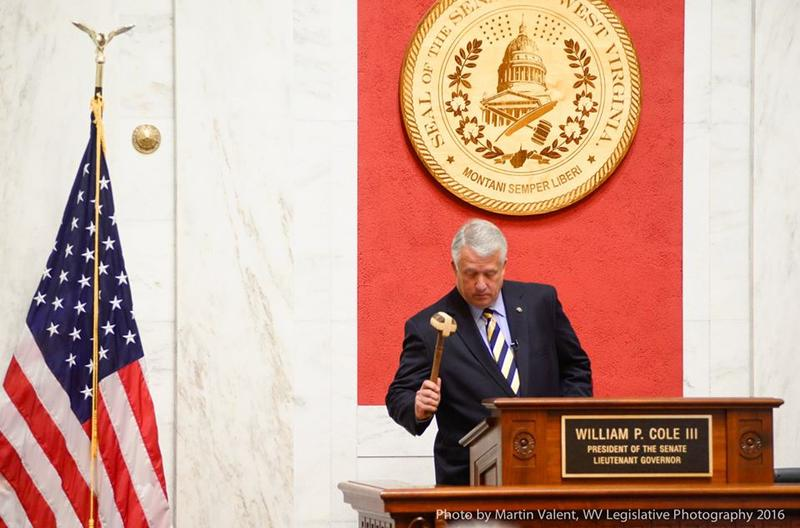 Senate President Bill Cole gavels in a recent floor session.