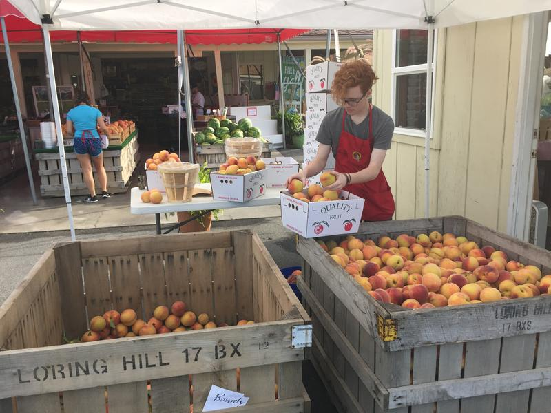 Peaches, Peach, Orr's Farm Market