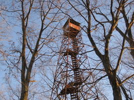 Tick Ridge Fire Tower, Cabwaylingo State Forest