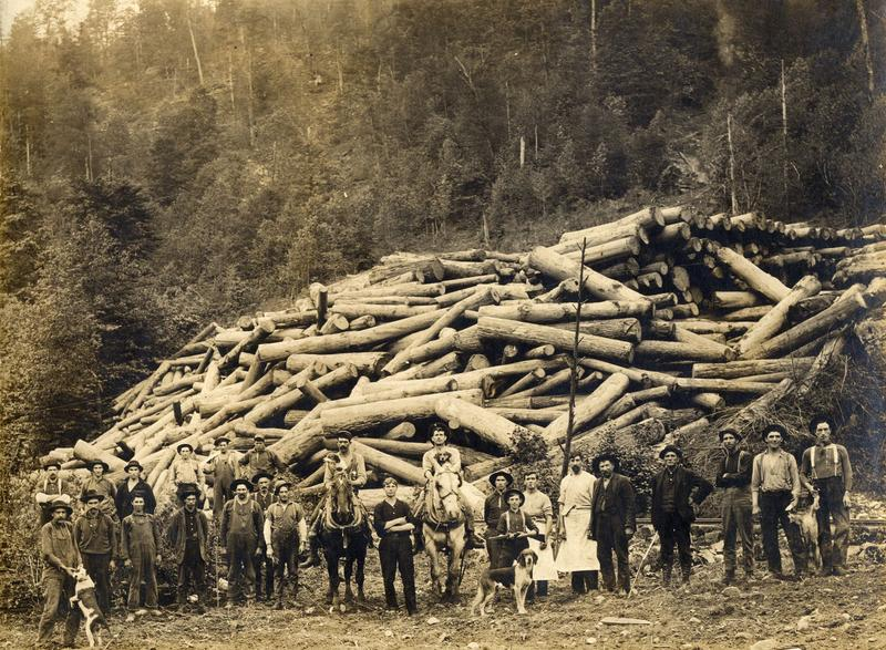 A large log landing -- Green Mountain, Tucker County, circa 1910.