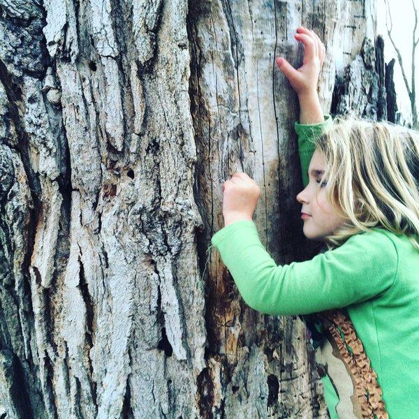 Laurel Fallon exploring trees in Morgantown, W.Va.