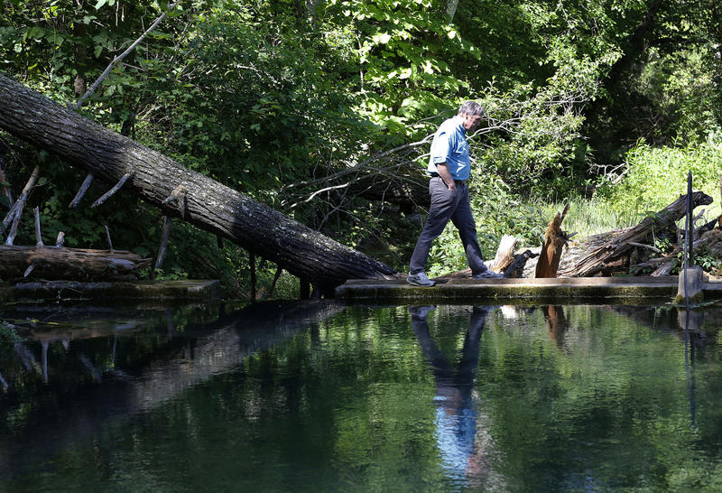 Department of Environmental Quality Firector, David Paylor walks along a retention pond for a spring near the route of the proposed Atlantic Coast Pipeline June 6, in Bolar, Va.