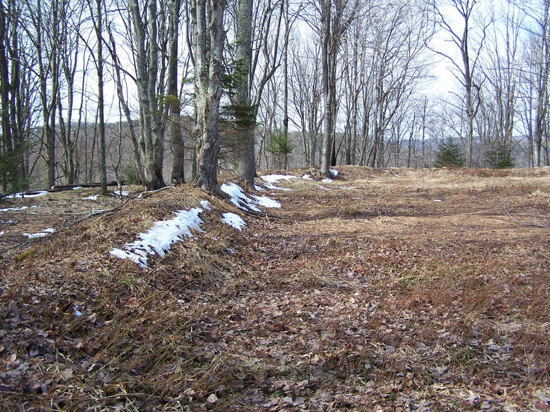 Earthworks at Fort Milroy on Cheat Mountain Summit