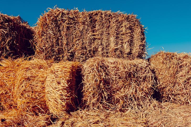 Hay, Farm, Bale of Hay