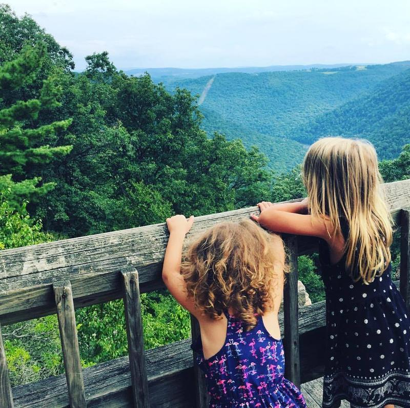 Cooper's Rock overlook