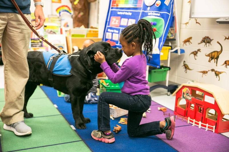 Pre-K students at Mary C. Snow Elementary School meet Axelle for the first time