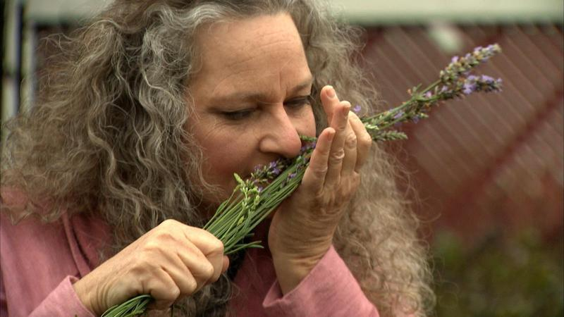 Shelly Kenney is a lavender farmer in Huntington, W.Va.