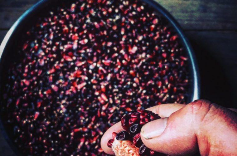 Bloody Butcher corn is one of the Appalachian heirloom crops grown by Mike Costello and Amy Dawson at Lost Creek Farm. The tradition of sharing heirloom seeds and the stories of these seeds inspired the name of 100 Days's food and culture vertical.