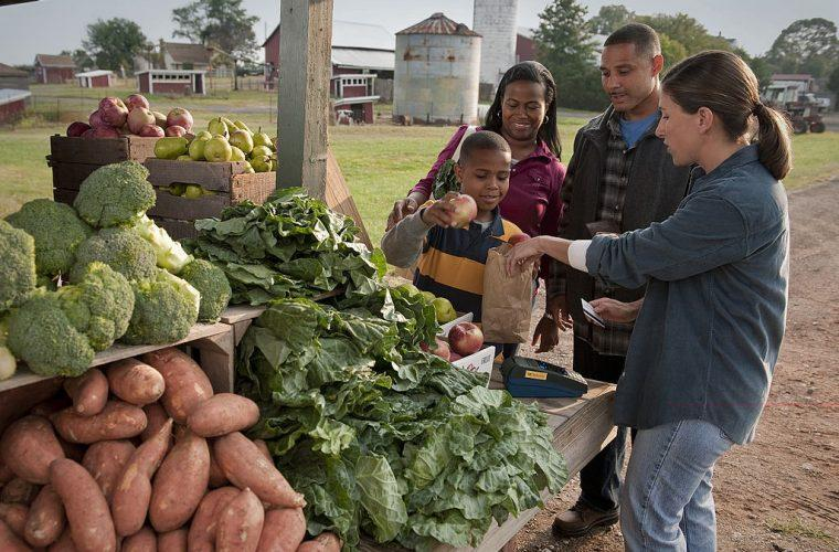 Earlier USDA efforts included making farmers markets available to Supplemental Nutrition Assistance Program recipients.