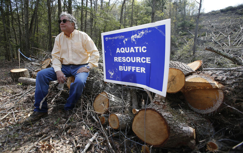In this Thursday, May 3, 2018 photo, beekeeper Constantine Chlepas sits on a section of downed trees on the route of the proposed Mountain Valley Pipeline near his property in Lindside, W.Va.