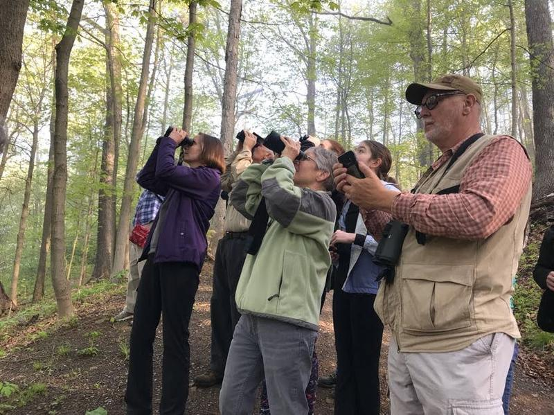 Birders identify species in the WVU arboretum, a popular woods in Morgantown, WV.