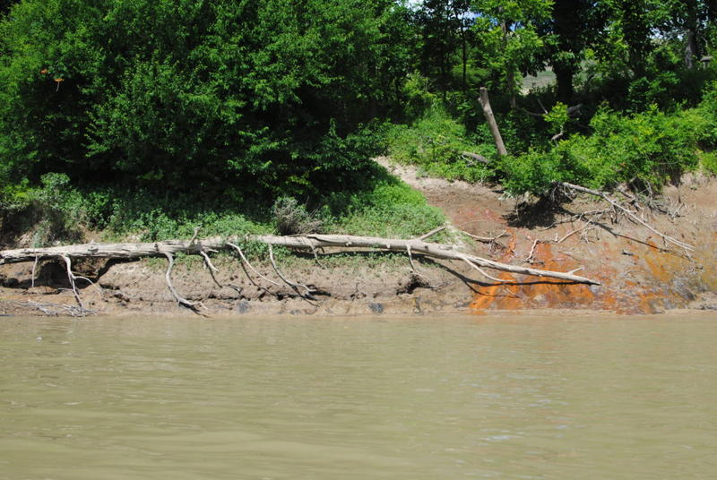 Riverbank discoloration near the coal ash landfill at the Green Power Station in Henderson County in June 2017