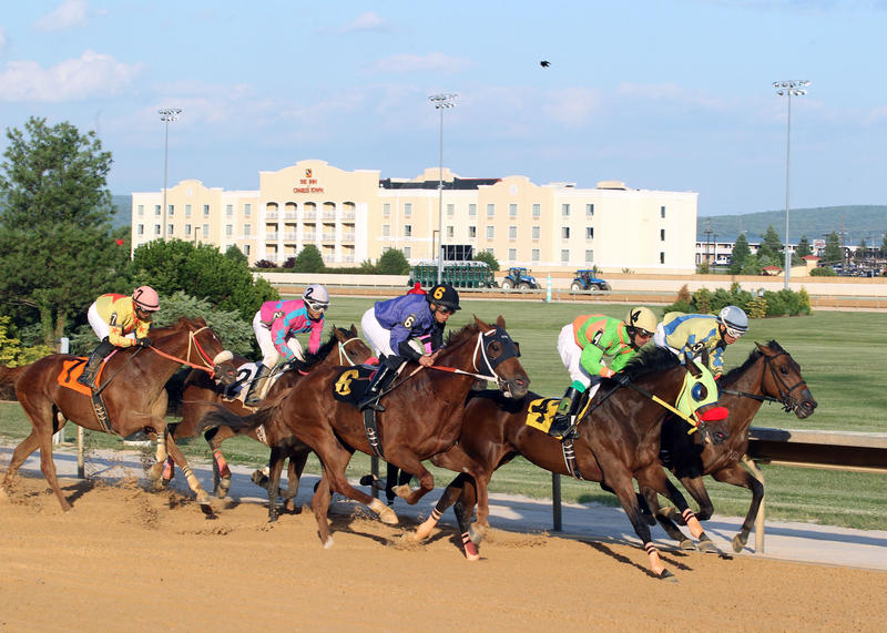 Thoroughbred horses participating in a race at the Hollywood Casino in Charles Town, W.Va.