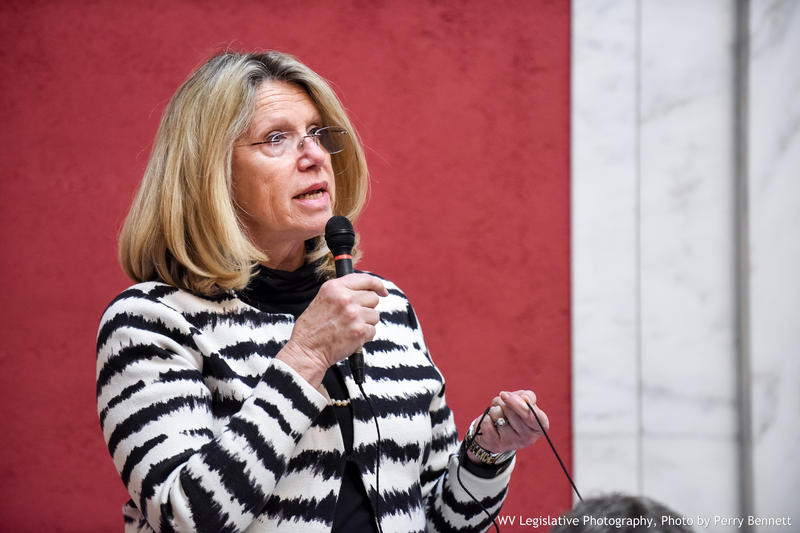 In this file photo from the West Virginia Legislature, Carol Miller speaks on the floor of the House of Delegates. She is now running for a seat in the U.S. House in West Virginia's 3rd Congressional District.
