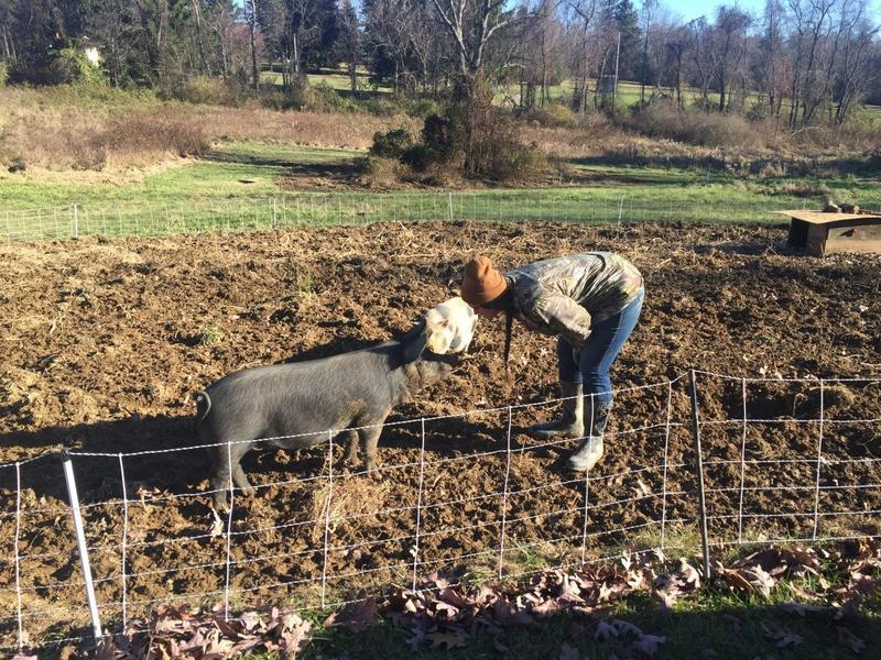 Laura Jean Kahl at Rabbit Hollow Farm