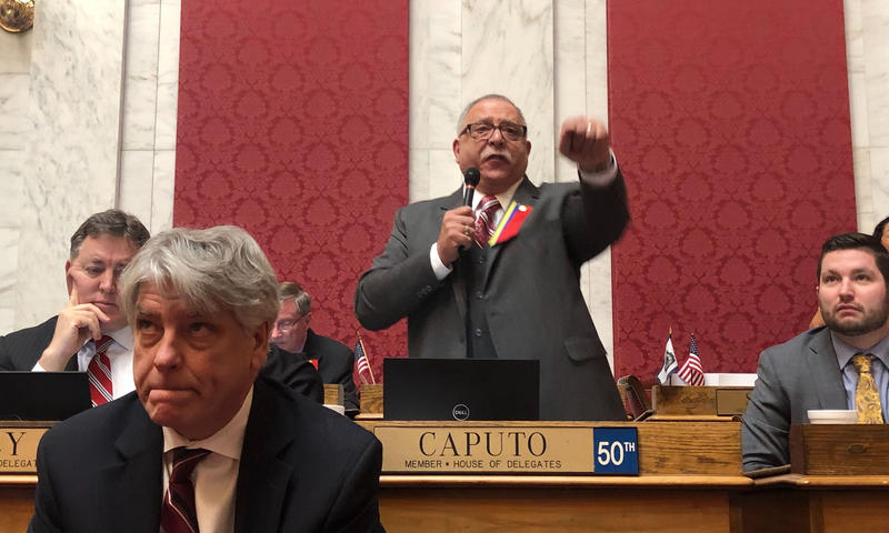 Delegate Mike Caputospeaks on the House floor.