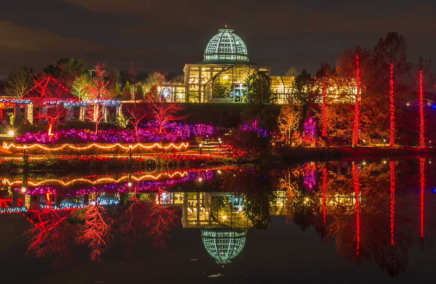Richmond Draws Crowds with Garden of Lights | WVTF
