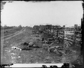 Confederate dead on the Hagerstown road at the Battle of Antietam