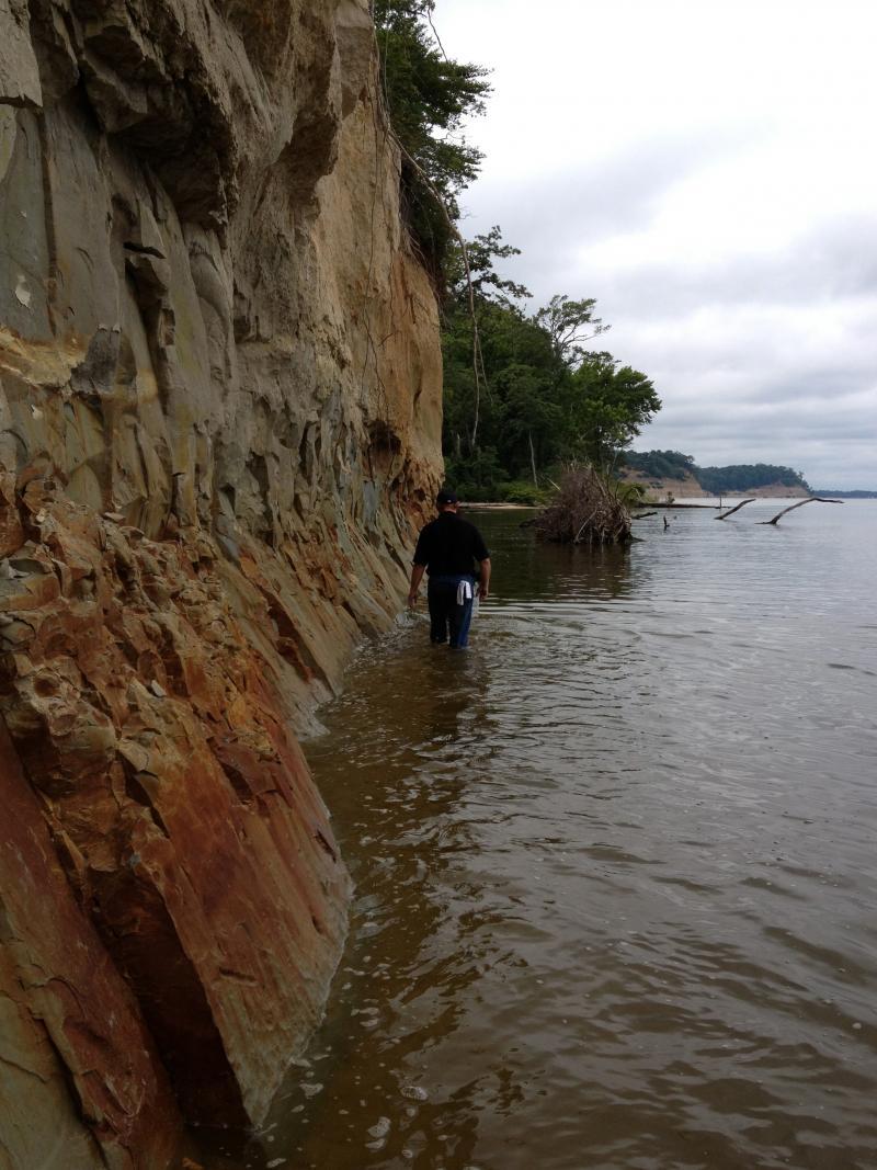 Stratford Hall's Jon Bachman walks the cliffs near the dig.