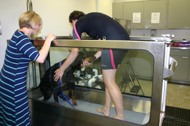 Flori Sforza leads Maya into the underwater treadmill