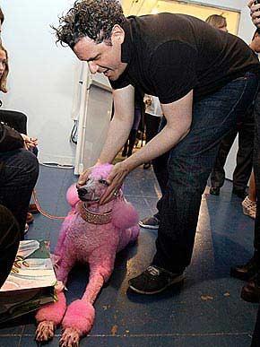 Designer Isaac Mizrhaki meets his model, Guinevere.