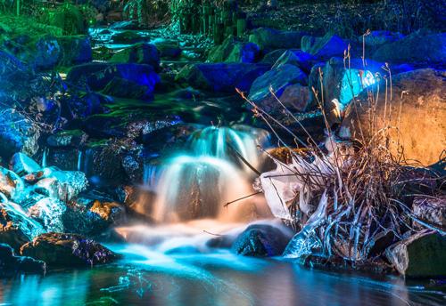 credit lewis ginter botanical garden - Lewis Ginter Botanical Garden