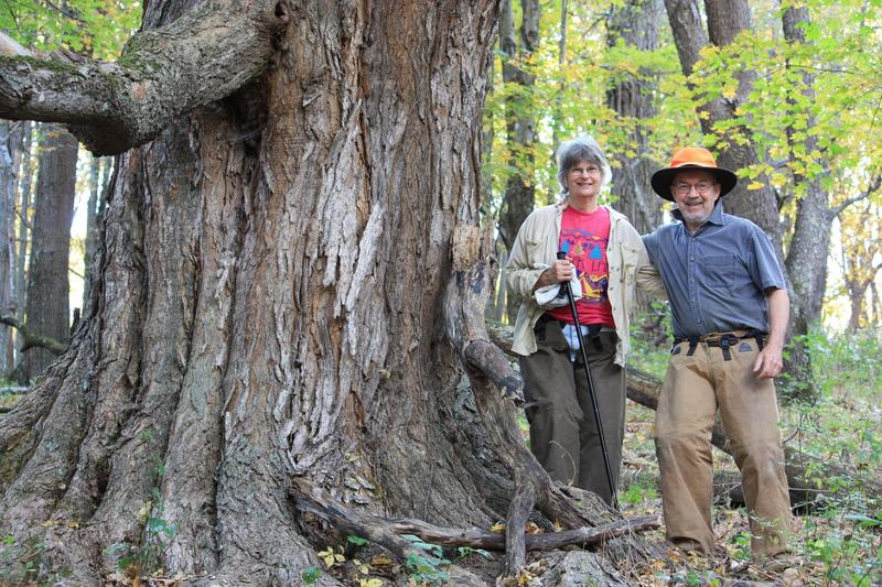Lynne and Bill Limpert are fighting to save their farm from destruction by the Atlantic Coast Pipeline.