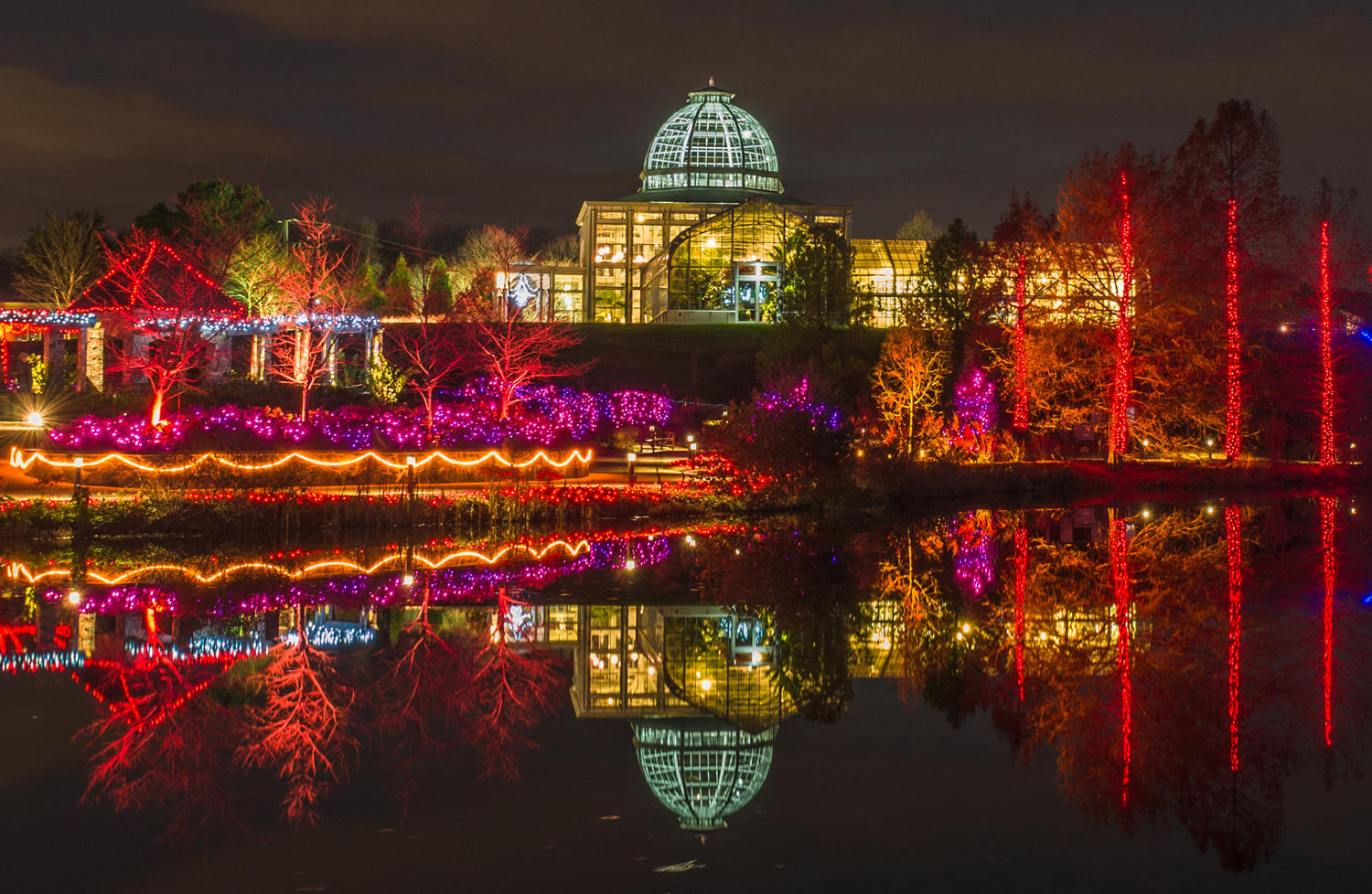 Richmond Draws Crowds With Garden Of Lights Wvtf