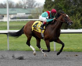 Went the Day Well racing in the 2012 Spiral Stakes at Turfway Park.
