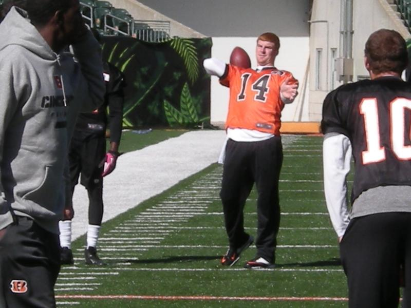 Andy Dalton has helped produce back-to-back playoff appearances in his two years as starting quarterback.
