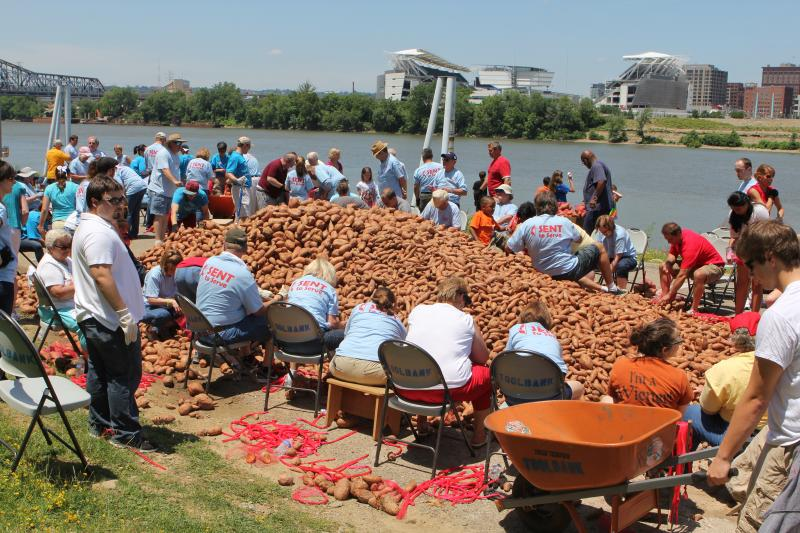 More than 4000 bags of sweet potatoes will be distributed to needy people in the area.