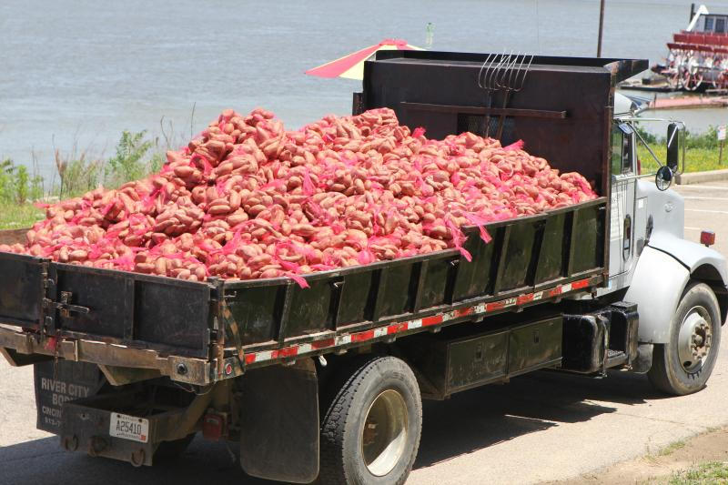 Dump truck with more than 1000 bags of potatoes bound for the Ida Spence Ministry for distribution Tuesday.
