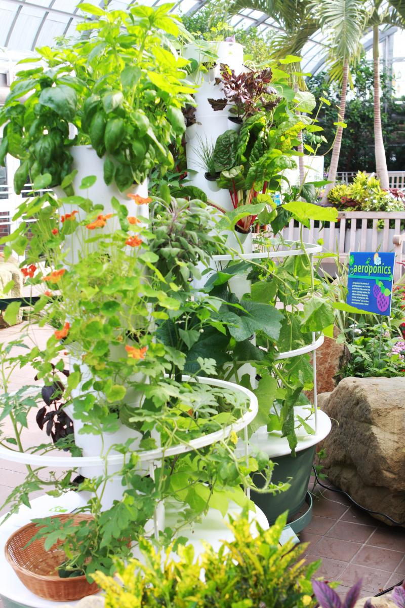 Aeroponics utilizes plastic towers to drip water onto plant roots.