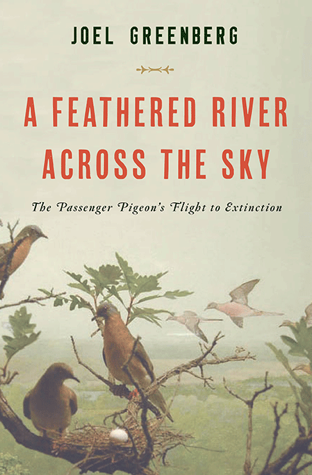 The story of the passenger pigeon, and its extinction.