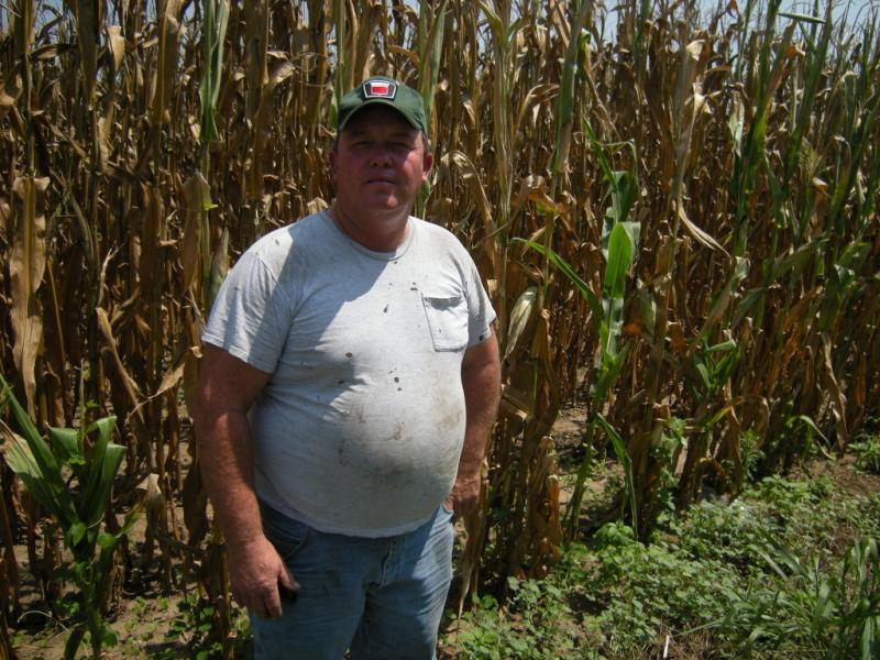 Butler County farmer Tim Hesselbrock in the midst of the 2012 drought.