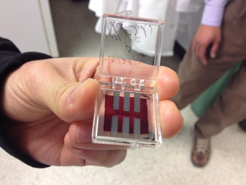 This is a solar cell made of polymers and graphene, an option that appears to be cheaper and more flexible.