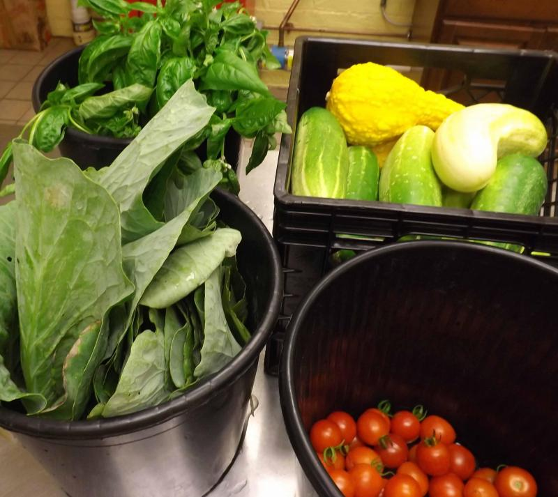 Produce from one Madisonville garden last year.