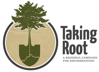 Taking Root iniative is restoring our region's tree canopy.