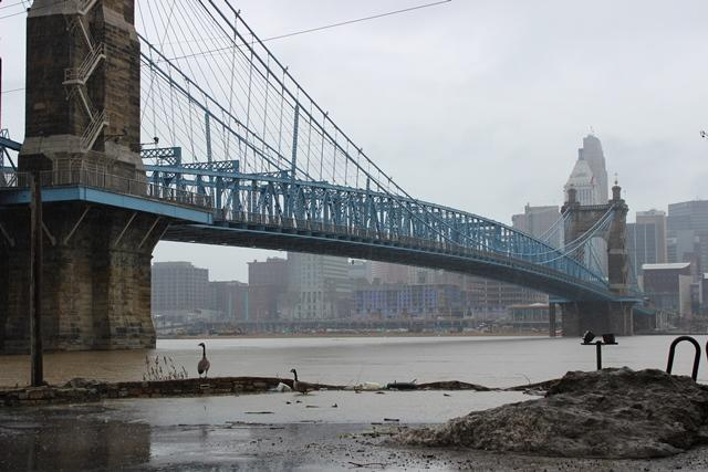 Roebling Suspension Bridge.