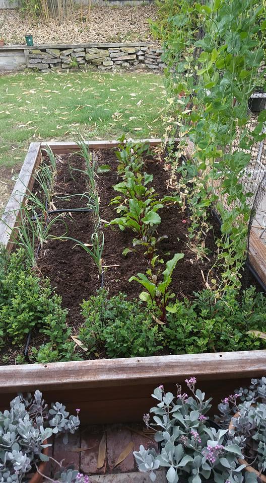 Small Market Gardening As A Career | WVXU