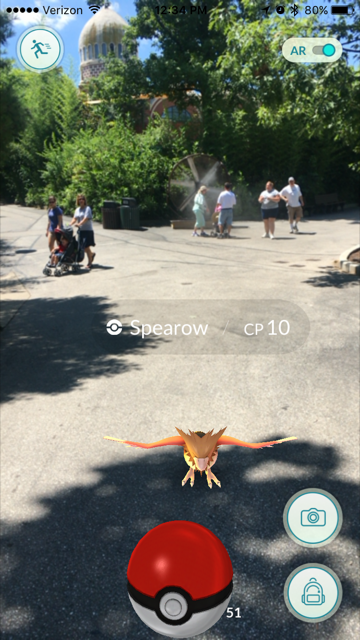 A user playing the game prepares to capture a type of Pokémon called a Spearow.